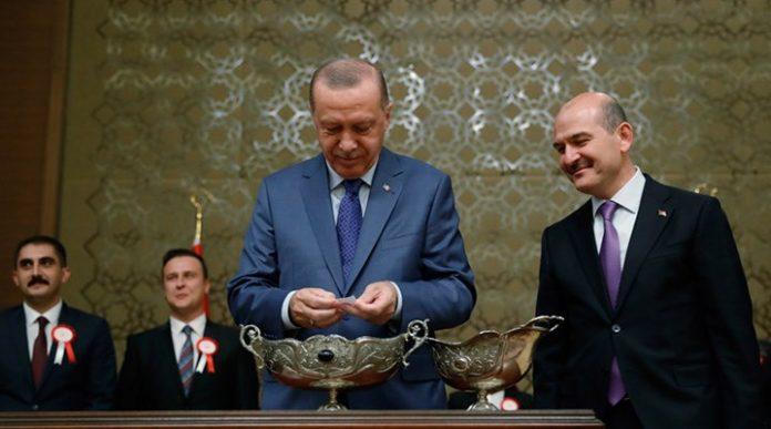 Soylu Erdoğan